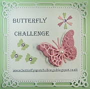 Butterfly Challenge copy