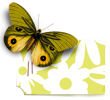 juno Chartreuse Butterfly Tag web