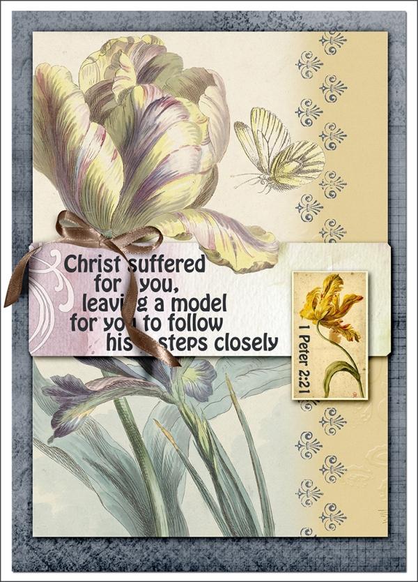 ccrl Christ Model web