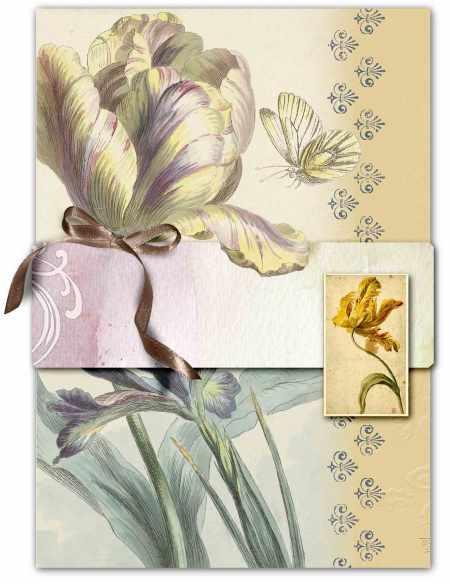 juno Melissavena Tulip Cluster web